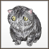 Cartoon: my dream cat (small) by condemned2love tagged cat,animals,kitty