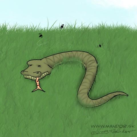 Cartoon: Stupid accident (medium) by Mandor tagged dead,snake,accident