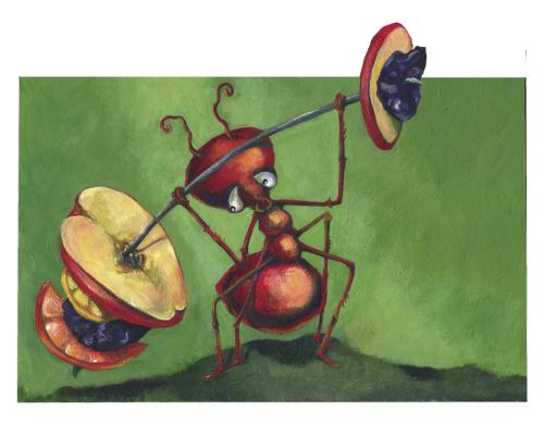 Cartoon: ameise-ant (medium) by Lissy tagged illustration,animals,insekt,ameise,frucht,stark,character,bodybuilding,fitness