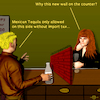 Cartoon: Bar talks 7 (small) by PuzzleVisions tagged puzzlevisions,trump,new,york,mauer,wall,bar,tequila