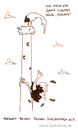 Cartoon: Kurschatten. (small) by puvo tagged storch,strauß,kurschatten,flirt,urlaub,urlaubsflirt,vogel,frühling,nest,strochennest,afrika,zugvogel,migrant,bird,stork,ostrich,spring,vacation,holiday,love,liebe