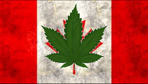 Cartoon: kanada (medium) by ab tagged canada,legalize