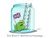 Cartoon: Das Brexitwetter (small) by RABE tagged brexit,eu,insel,may,britten,austritt,rabe,ralf,böhme,cartoon,karikatur,pressezeichnung,farbcartoon,tagescartoon,bauhaus,baukasten,bauklötzer,plan,referendum,februar,irre,irrsinn,frosch,wetter,wetterfrosch,wettervorhersage,leiter,einweckglas,sprossen