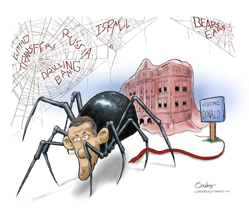 Cartoon: US Presidential Transition (medium) by Goodwyn tagged obama,trump,spider,web,white,house