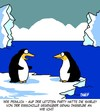 Cartoon: Party (small) by Karsten tagged frauen kleider party pinguine tiere natur