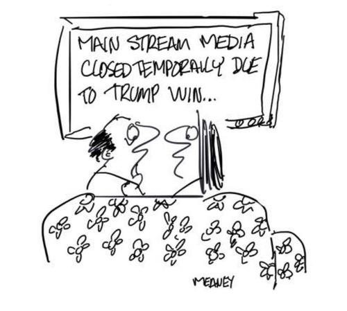 Cartoon: MSM (medium) by John Meaney tagged tv,newspaper,polls