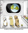 Cartoon: Spacedogs (small) by noodles tagged space,dogs,tennis,ball,noodles,earth,from,planet