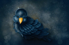 Cartoon: Bird (small) by alesza tagged bird digital painting illustration cute animal feather