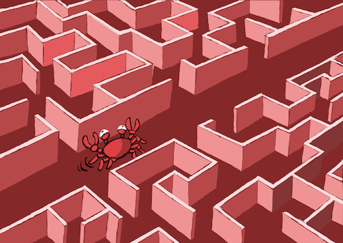 Cartoon: Crab Labyrinth... (medium) by berk-olgun tagged crab,labyrinth