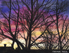 Cartoon: Abenddämmerung (small) by Pascal Kirchmair tagged natur,crepuscule,abenddämmerung,dusk,twilight,anochecer,crepuscolo,aquarell,pascal,kirchmair,watercolour,silhouettes,dipinto,pintura,picture,painting,peinture,cuadro,illustration,quadro