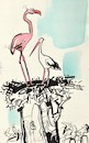 Cartoon: Storks new wife (small) by Kestutis tagged wife stork africa kestutis lithuania spring