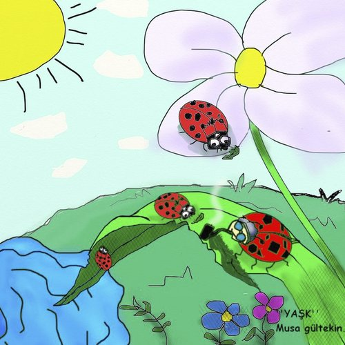 Cartoon: ladybug (medium) by musa gültekin tagged ladybug,ugurböcegi,cicek,flover,run