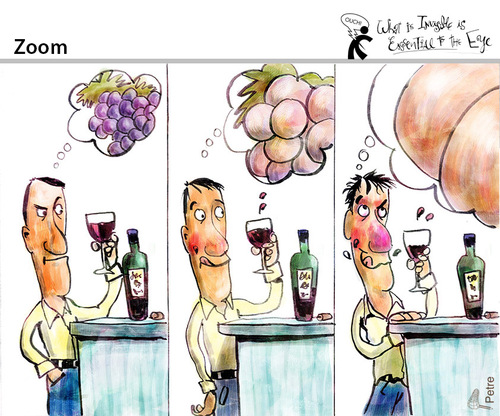 Cartoon: Zoom (medium) by PETRE tagged wine,grapes