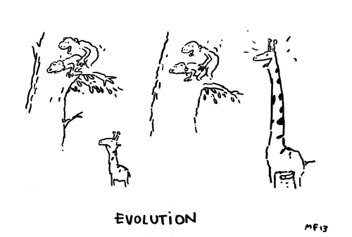 Cartoon: Evolution! (medium) by MarcoFinkenstein tagged evolution,giraffen,baum,affen