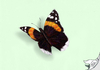 Cartoon: Admiral (small) by swenson tagged butterfly schmetterling insekt insect animal animals tier tiere