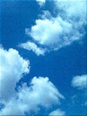 Cartoon: Berliner Sommerwolken (small) by lesemaus tagged berliner,sommerwolken