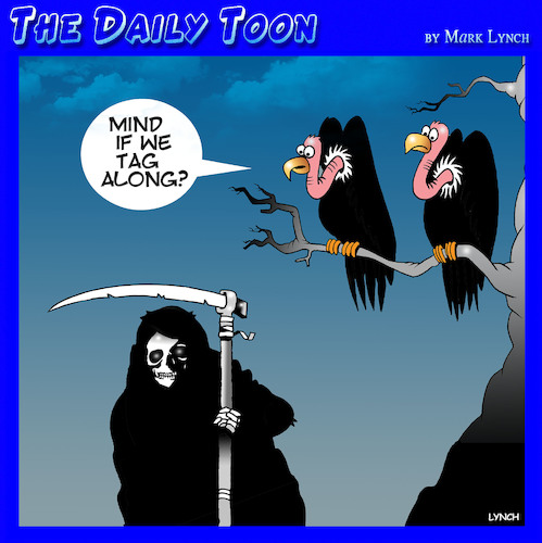 Cartoon: Angel of death (medium) by toons tagged vultures,angel,of,death,grim,reaper,vultures,angel,of,death,grim,reaper