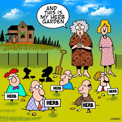Cartoon: Herb garden (medium) by toons tagged herbs,spices,gardening,gardens,vegetables,cooking,farming,vegetable,garden,condiments