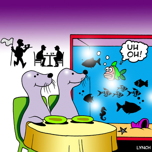 Cartoon: seal dinner (medium) by toons tagged seals,restaurant,fish,cafe,seafood