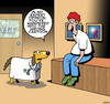 Cartoon: Expert opinion (small) by toons tagged dogs,vet,veterinarian,doctors,misunderstandings,cartoon,talking,dog