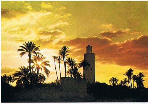 Cartoon: La Koutoubia Sunset - Marrakech (medium) by RnRicco tagged maroc,marocco,marokko,sunset,arabic,africa,palms,ricco