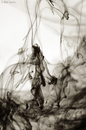 Cartoon: Dancing With a Veil (small) by BenHeine tagged ink,water,dancing,with,veil,abstraction,benheine,encre,diffusion,sepia,tones,abstracted,minimalist,unexpected,grace,photography,art,movement,dynamism,paint,black,matter
