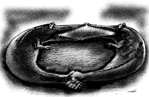 Cartoon: Crocodiles shaking hands (medium) by Medi Belortaja tagged threat,handshake,crocodiles