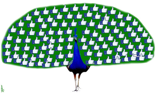 Cartoon: fb peacock (medium) by Medi Belortaja tagged fb,peacock,internet,like
