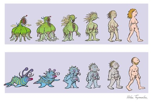 Evolution of Man and Woman (medium) by etc tagged men,women